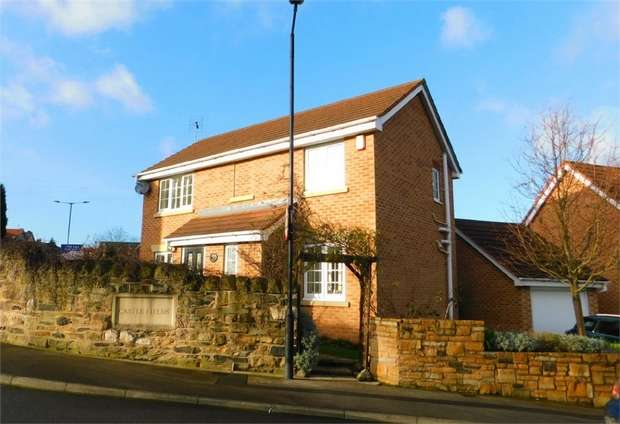 3 Bedrooms Detached House for sale in Moat House Way, Conisbrough, Doncaster, South Yorkshire