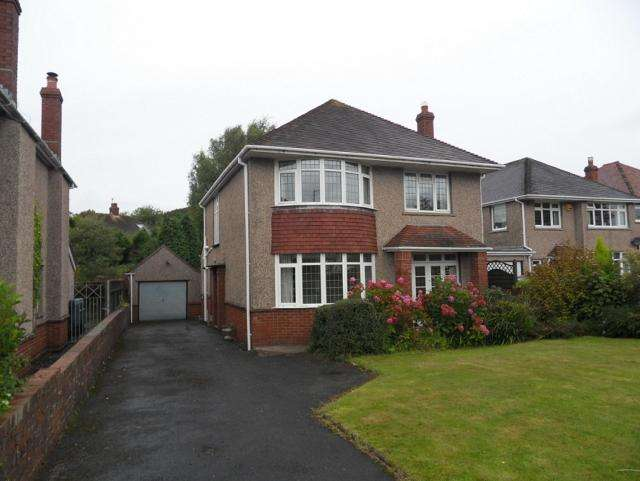 3 Bedrooms Detached House for rent in Derwen Fawr Road, Sketty, Swansea, SA2 8DP