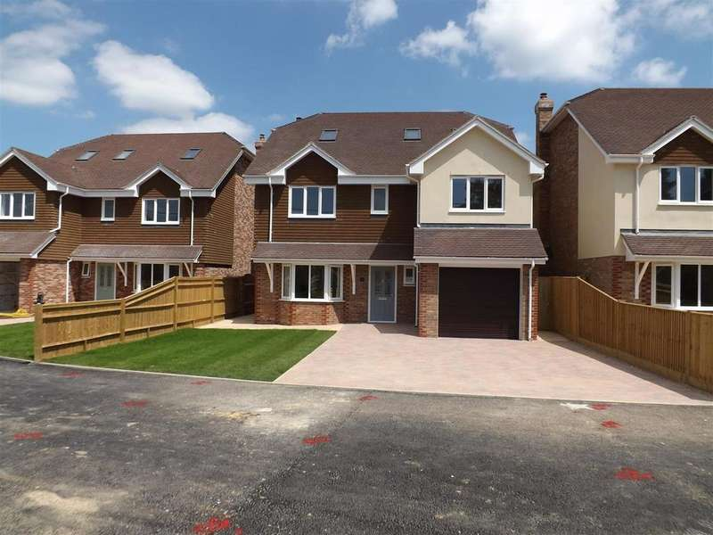 6 Bedrooms Detached House for sale in Eastbourne Road, Halland