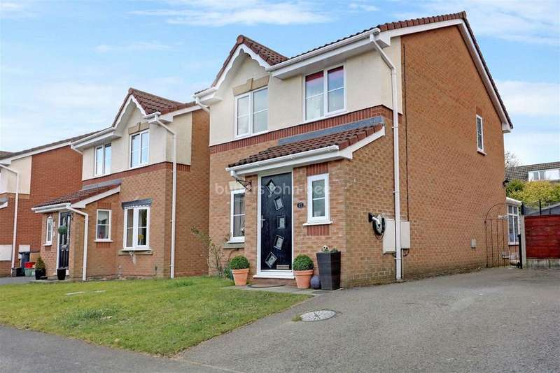 3 Bedrooms Detached House for sale in Bramhalls Park, Anderton