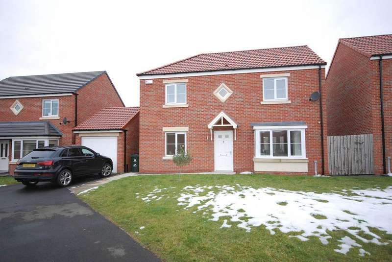 4 Bedrooms Detached House for sale in Dunnock Place, Five Mile Park, Wideopen