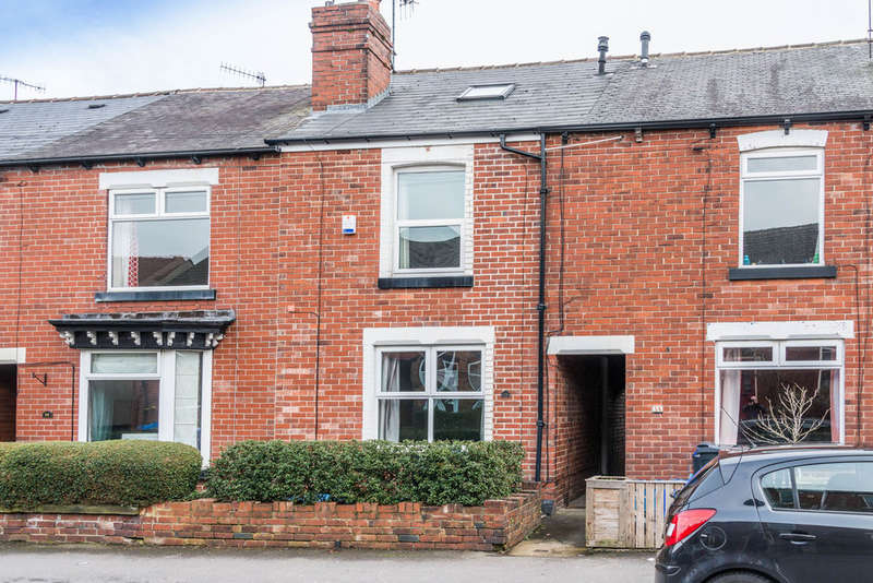 3 Bedrooms Terraced House for sale in Mitchell Road, Abbey Lane