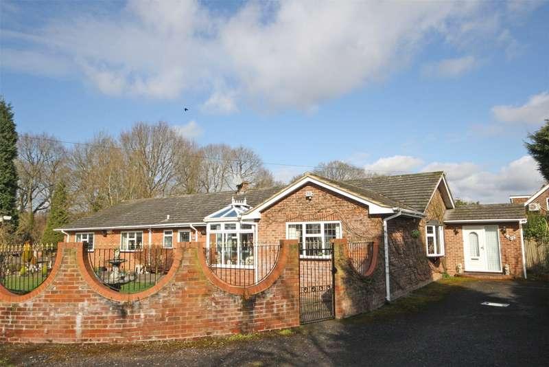 4 Bedrooms Detached Bungalow for sale in Horsham Road, Capel, Dorking, Surrey, RH5