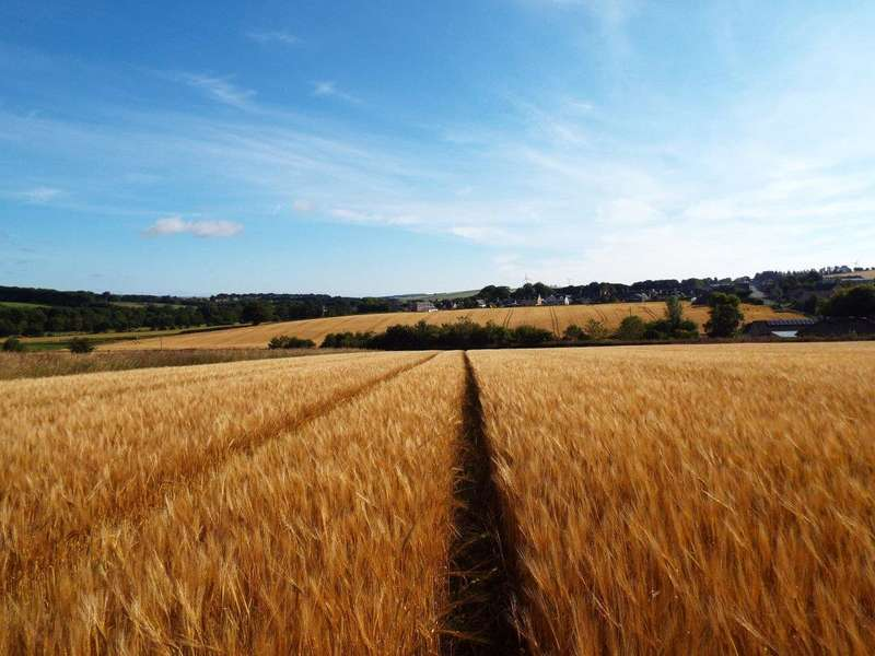 Farm Commercial for sale in Lot 2 Moss side, Cuminestown, Turriff, AB53 5YL, AB53
