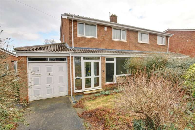 3 Bedrooms Semi Detached House for sale in The Meadows, Sedgefield, Stockton-on-Tees, TS21