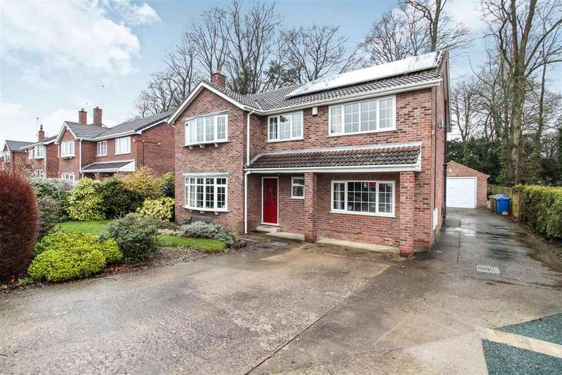 5 Bedrooms Detached House for sale in Lowndes Park, Driffield