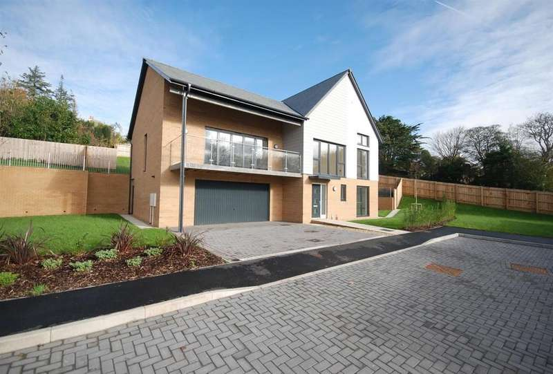 4 Bedrooms Detached House for sale in Meadow Rise, Northam, Nr Bideford