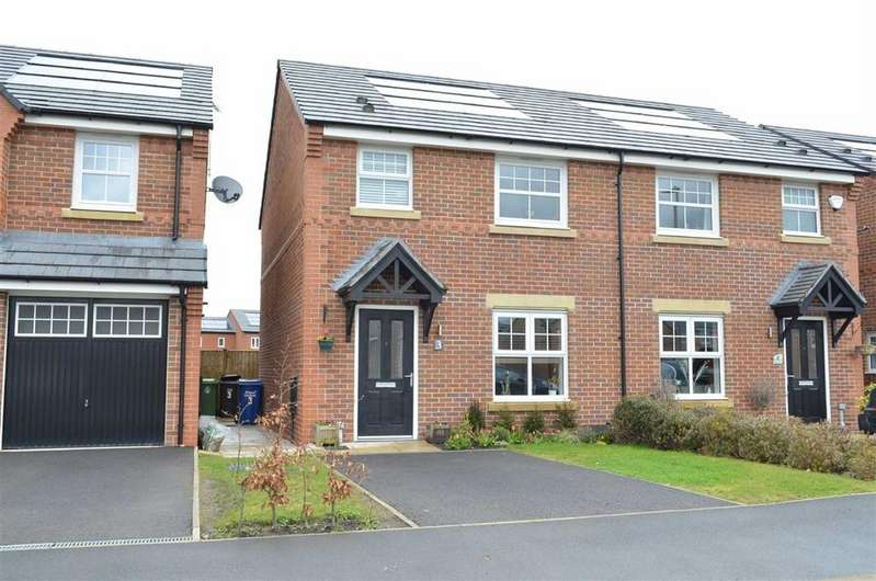 3 Bedrooms Semi Detached House for sale in Wilkinson Park Drive, Leigh