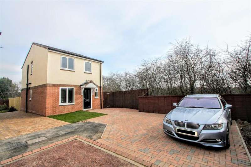 3 Bedrooms Detached House for sale in Windrush Grove, Darlington