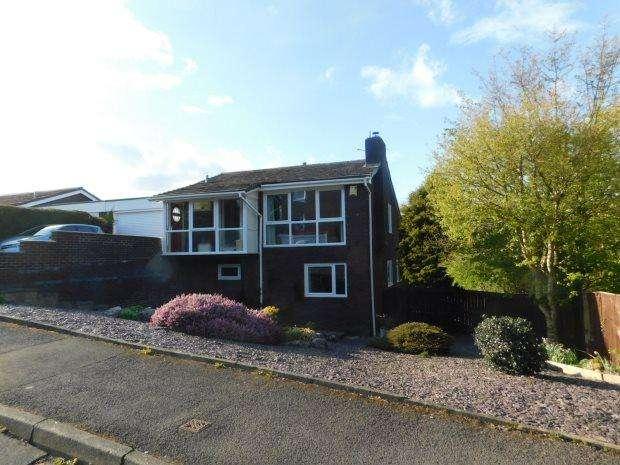 4 Bedrooms Detached House for sale in ARCHERY RISE, NEVILLES CROSS, DURHAM CITY