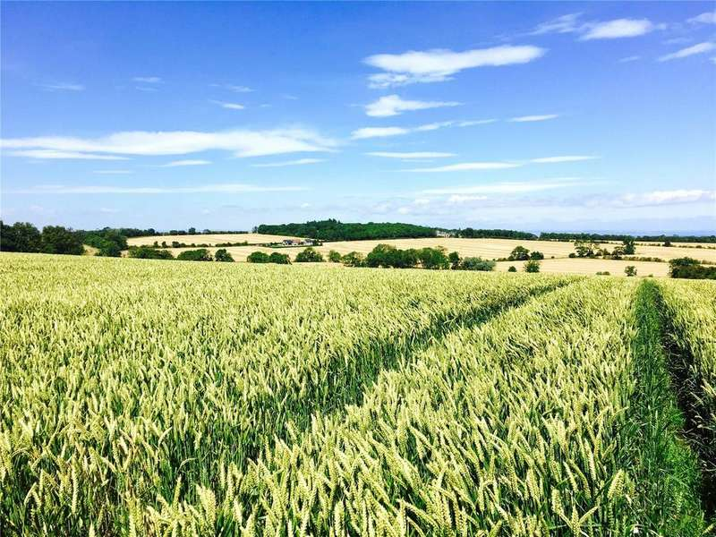 Farm Commercial for sale in Land At Feddinch Waterless, St. Andrews, Fife, KY16
