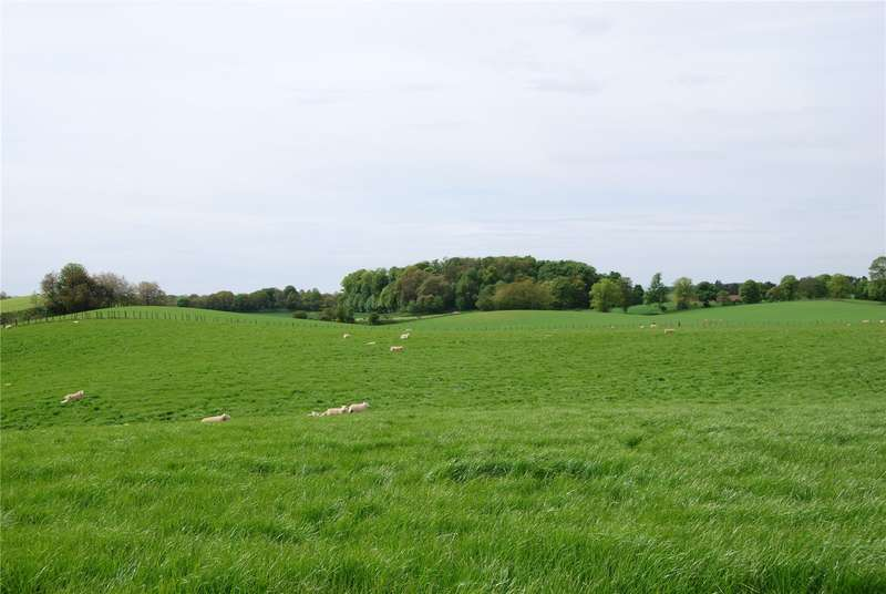Land Commercial for sale in Land At Carlingwell Farm, Carlingwell Farm, Airlie, Kirriemuir, Angus, DD8