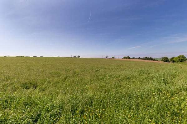 Land Commercial for sale in East Doura Farm - Lot 4, Craigie, Kilmarnock, South Ayrshire, KA1