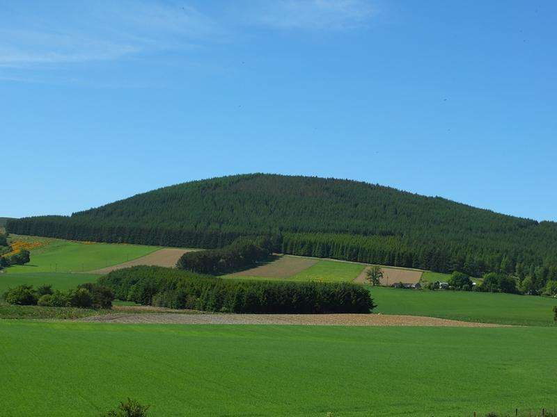 Land Commercial for sale in Westertown Forest, Glenbuchat, Aberdeenshire AB36