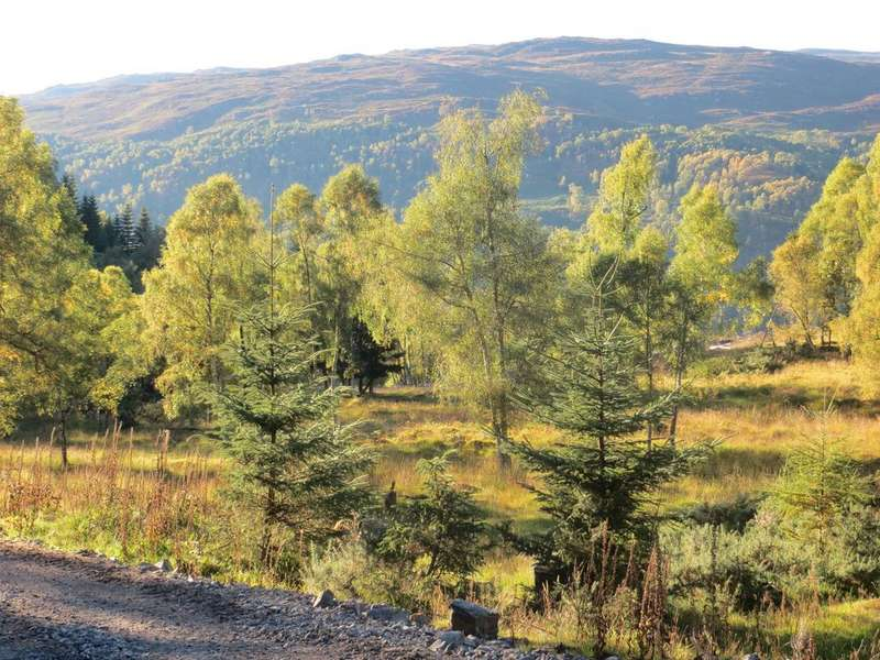 Land Commercial for sale in Nr Cannich, Inverness-shire IV4