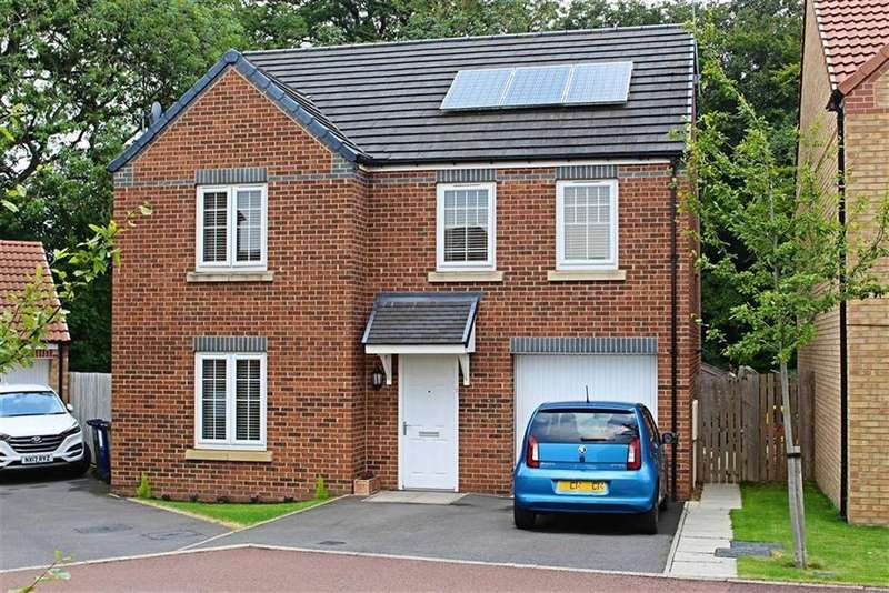 4 Bedrooms Detached House for sale in Maddison Grove, Normanby