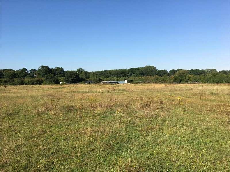 Farm Commercial for sale in Allington Lane, Fair Oak, Eastleigh, Hampshire, SO50