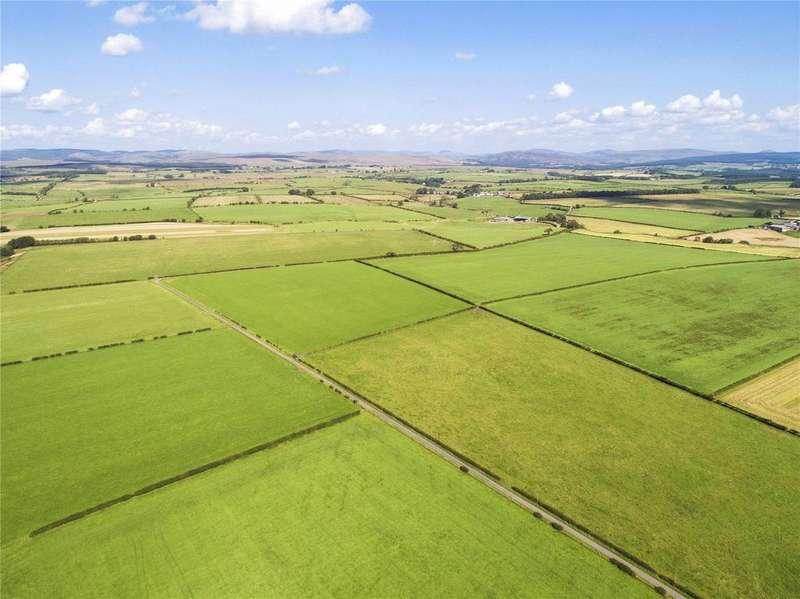 Farm Commercial for sale in The Evertown Portfolio - Whole, Canonbie, Dumfriesshire, DG14