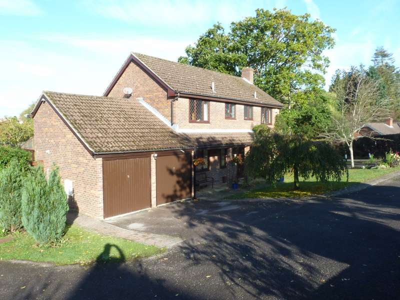 4 Bedrooms Detached House for sale in Twynhams Hill, Shirrell Heath, SO32