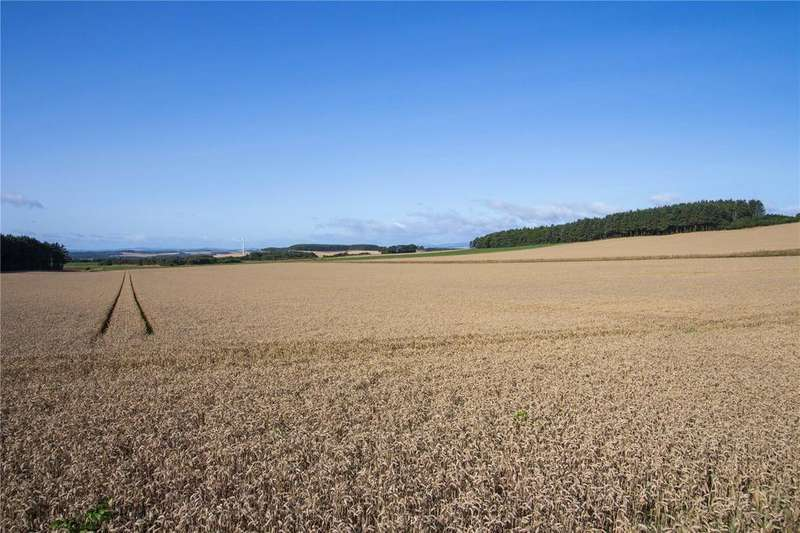 Farm Commercial for sale in Land At Criggie Farm, St. Cyrus, Montrose, Angus, DD10