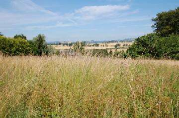Plot Commercial for sale in Beech Hill Road, Coupar Angus PH13
