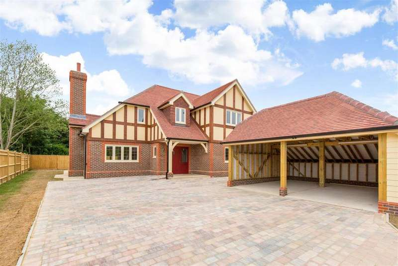 4 Bedrooms Detached House for sale in Danecroft Place, Hellingly