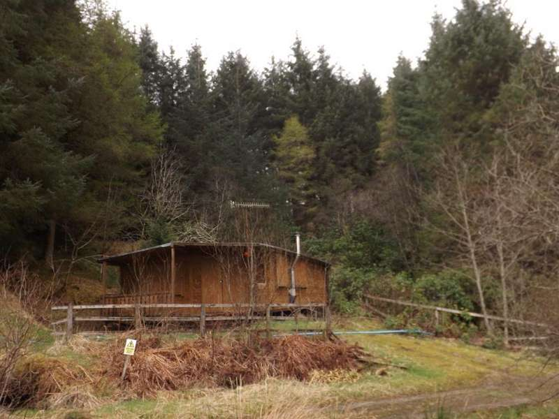 Plot Commercial for sale in Plot Maymore Forest, Glendaruel, PA22 3AB