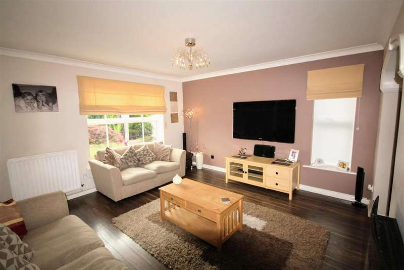 4 Bedrooms Detached House for sale in Meadow Drive, Chester Le Street, Chester Le Street