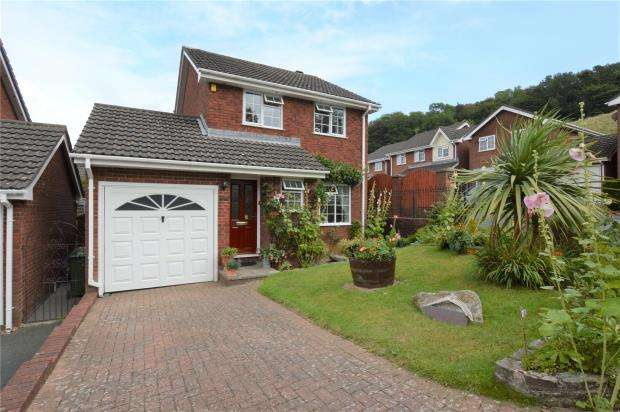 3 Bedrooms Detached House for sale in Merafield Drive, Plymouth, Devon