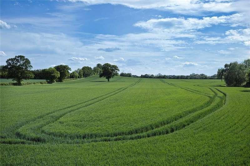 Farm Commercial for sale in LOT 3, Swineshead Farms, Swineshead, Bedfordshire, MK44