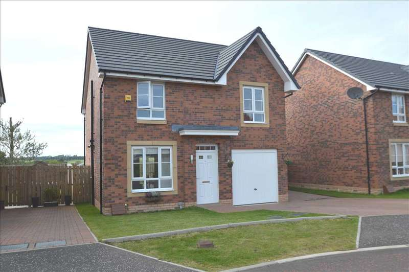 4 Bedrooms Detached House for sale in Cot Castle Grove, Larkhall