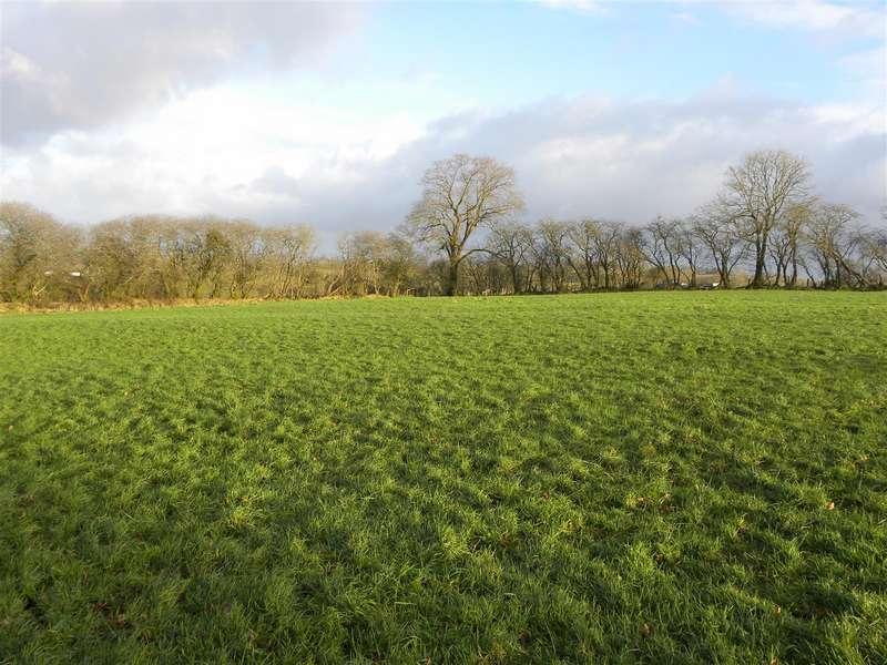 Land Commercial for sale in 4 Acres Opposite Foel Farm, New Inn, Pencader