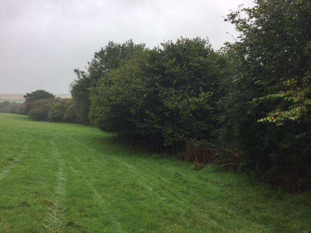 Land Commercial for sale in North Buckland, Braunton