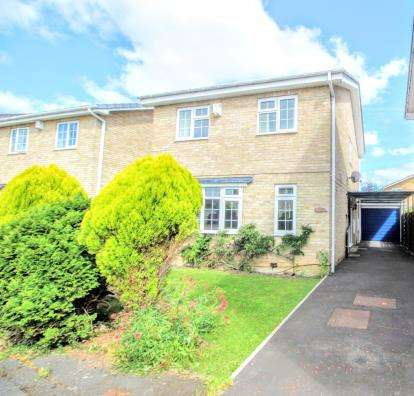 3 Bedrooms Detached House for sale in Larchwood, Washington, Tyne and Wear, NE38