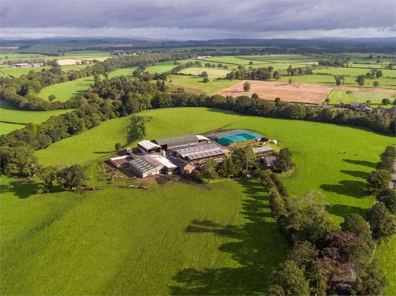 Detached House for sale in LOT 1 - Stubb Farm, Kirklinton, Carlisle, Cumbria