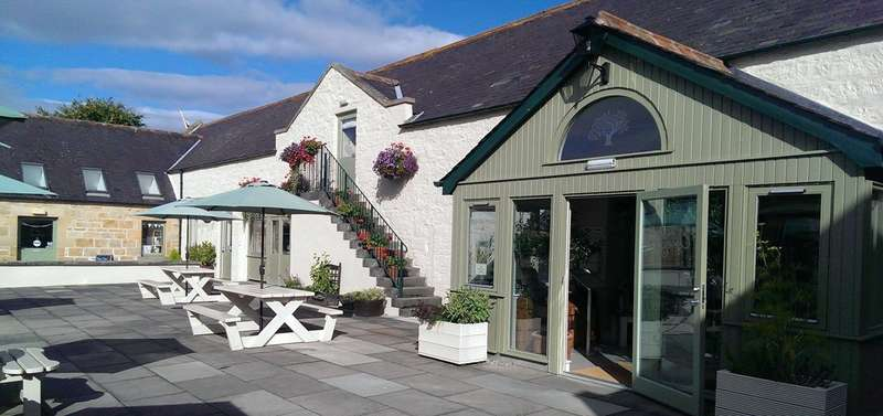 Cafe Commercial for sale in The Olive Tree Caf , Dunphail, Forres, IV36