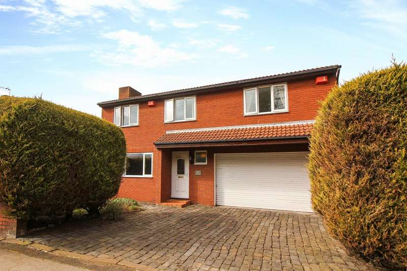 5 Bedrooms Detached House for sale in Lead Road, Greenside, Ryton
