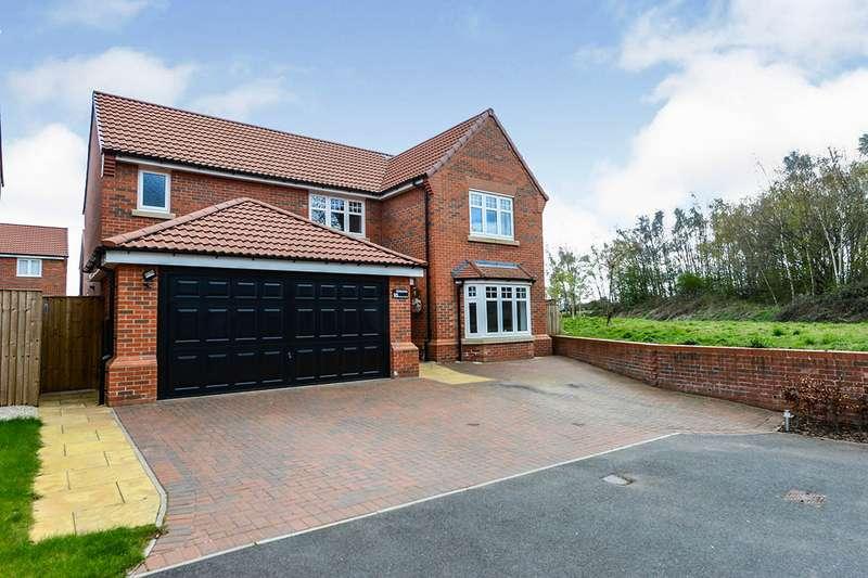 4 Bedrooms Detached House for sale in Hunter Drive, Hucknall, Nottingham, NG15
