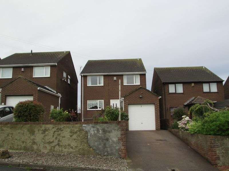 4 Bedrooms Detached House for sale in Cadwell Lane, Peterlee