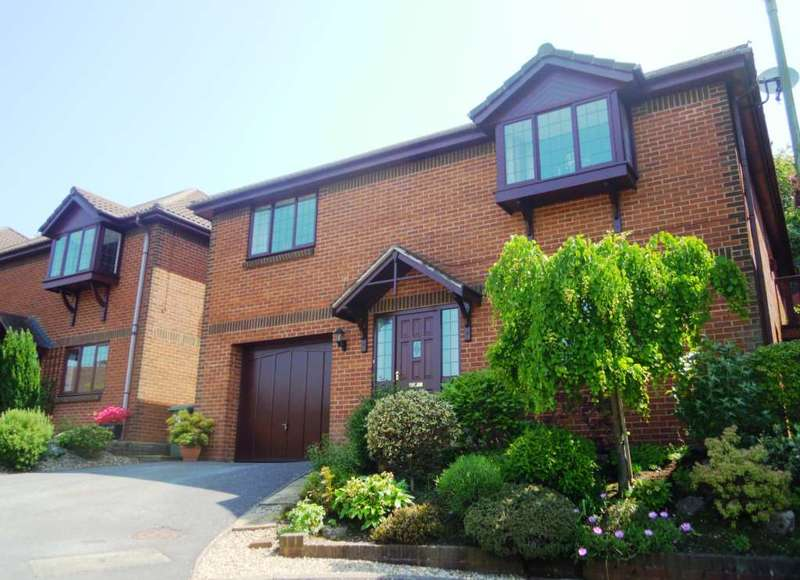4 Bedrooms Detached House for sale in West View Close, East Ogwell