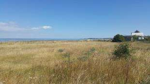 Land Commercial for sale in Faversham Road, Seasalter, Whitstable, Kent