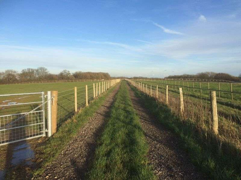 Land Commercial for sale in Equestrian land for sale, approximately 4 acres (unmeasured)