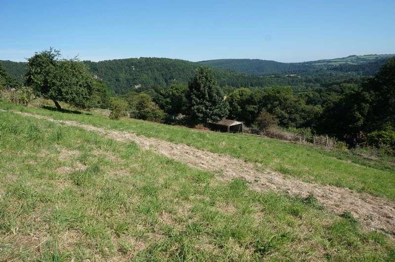 Property for sale in Bakers Lane, Gunnislake