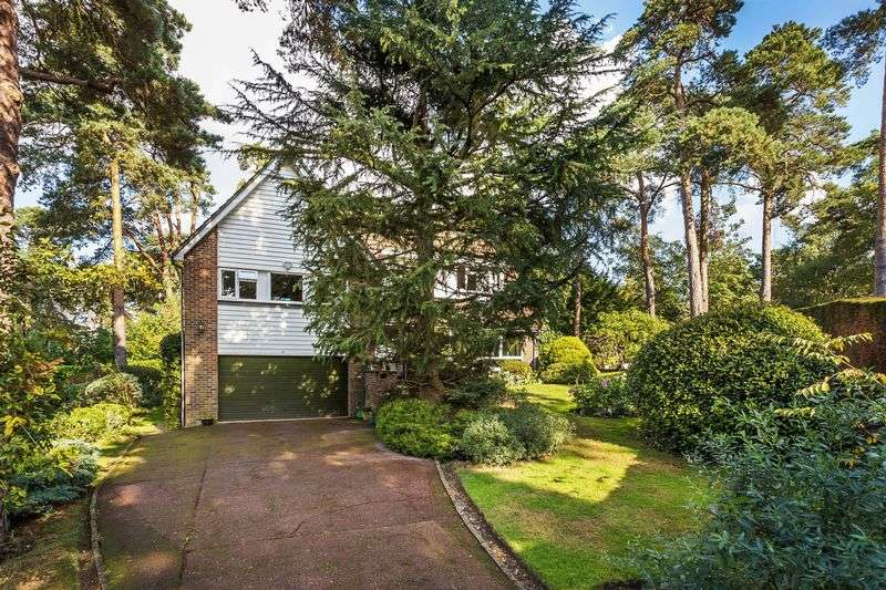 4 Bedrooms Detached House for sale in Pine Coombe, Shirley Hills