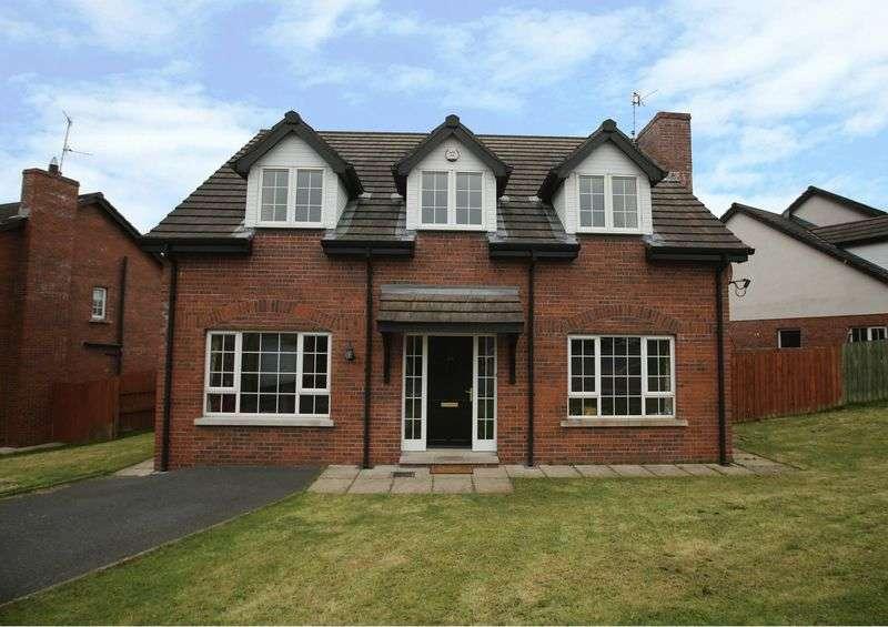5 Bedrooms Detached House for sale in 225 Belvedere Manor, Lurgan