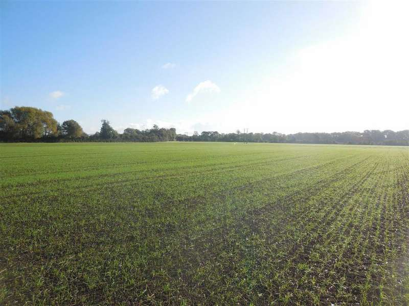 Land Commercial for sale in Allerthorpe