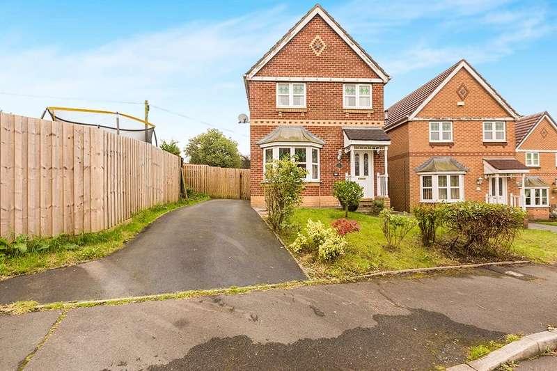 3 Bedrooms Detached House for sale in Aintree Drive, Lower Darwen, Darwen, BB3