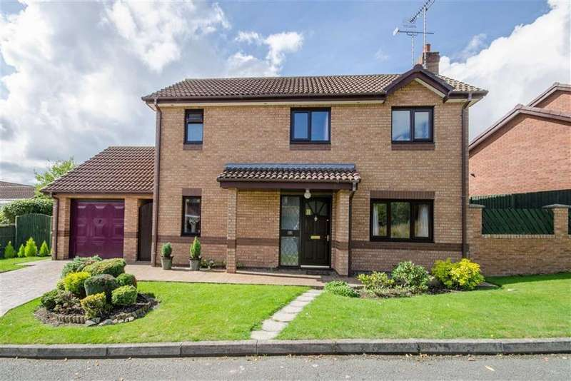 3 Bedrooms Detached House for sale in Llys Y Foel, Mold, Mold