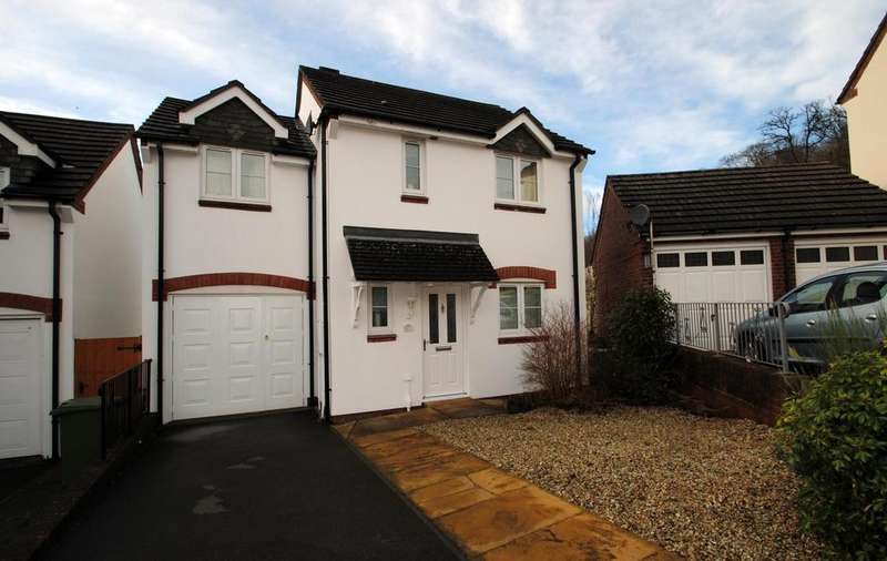 4 Bedrooms Detached House for sale in Soloman Drive, Bideford