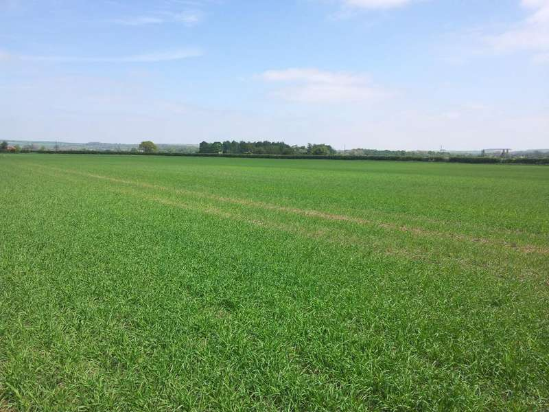 Land Commercial for sale in North Kelsey, Market Rasen, Lincolnshire